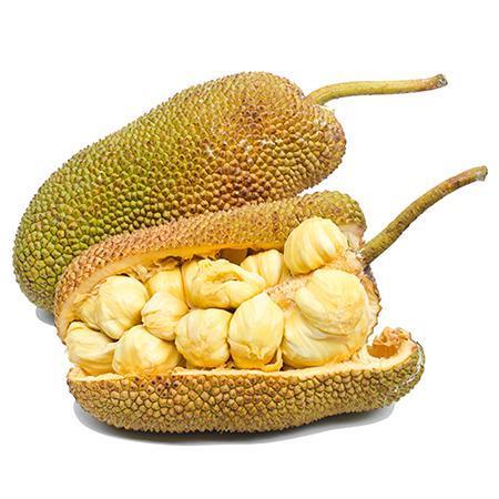 Jackfruit Tree Hipster Food Jackfruit Food Trends
