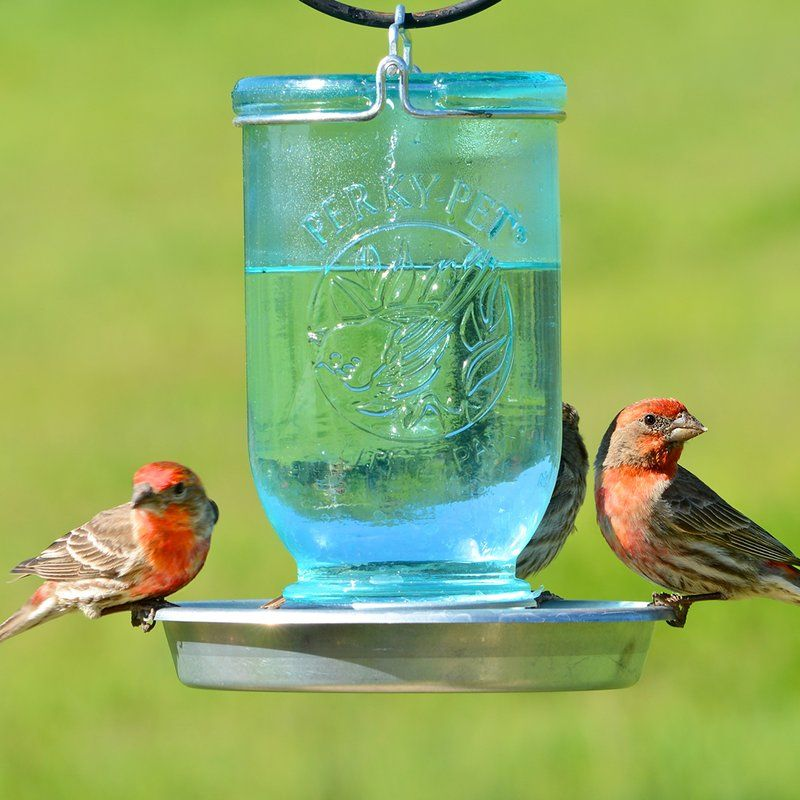 Mason Wild Bird Feeder Mason Jar Bird Feeders Bird Feeders Wild Bird Feeders