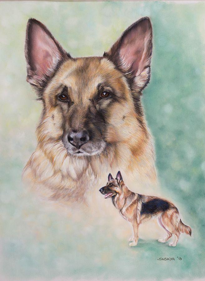 * Tara * Deutsche Schäferhündin / German Shepherd - Auftragsarbeit - commissioned work / Soft Pastel