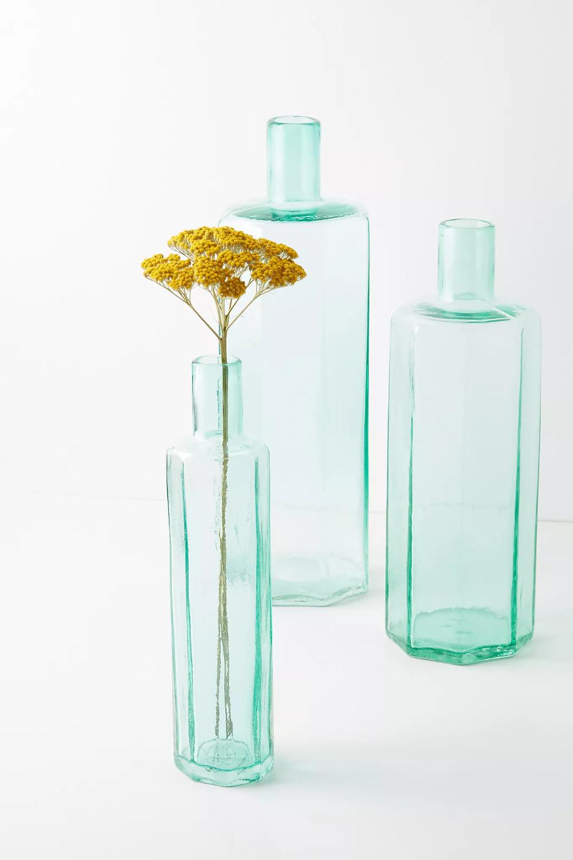 Bottle Bud Vase | Anthropologie