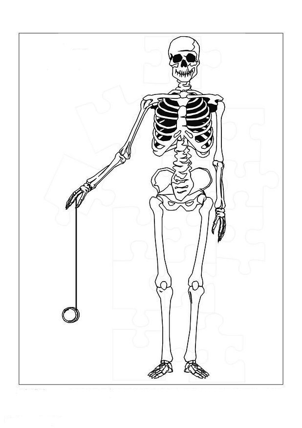 17 coloring pages of Human body on Kids-n-Fun.co.uk. On