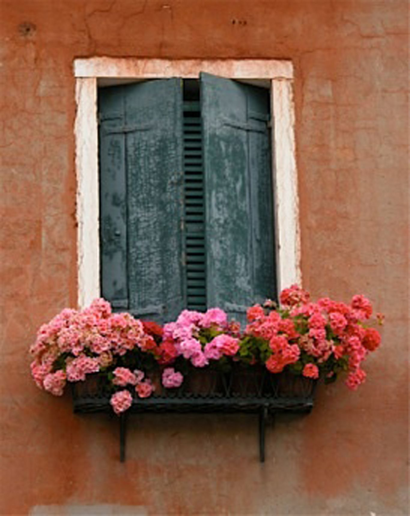 House box window design  as a kid and even as a grownup i always imagined my home would