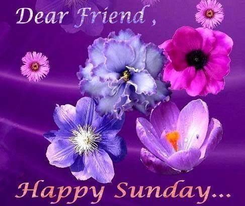 Dear Friend Happy Sunday Good Morning Sunday Sunday Quotes Happy