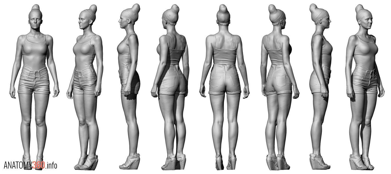 http://www.anatomy360.info/anatomy-scan-reference-dump/   Anatomy ...