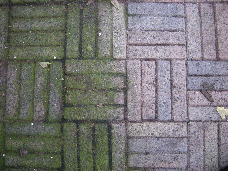 Mos Verwijderen Tegels : Groene aanslag verwijderen de voorjaarsschoonmaak