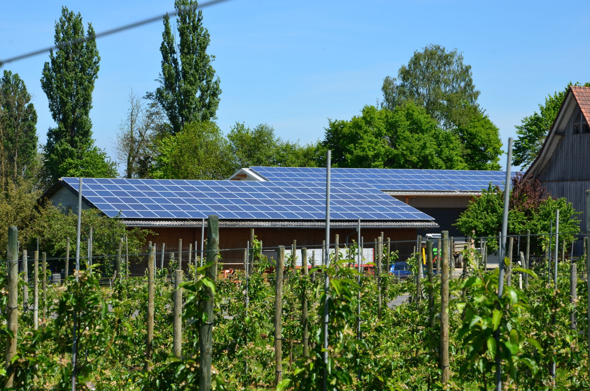 Eu Call Defossilising Agriculture Solutions And Pathways For Fossil Energy Free Farming Solar Energy Facts Solar Energy Solar Panels