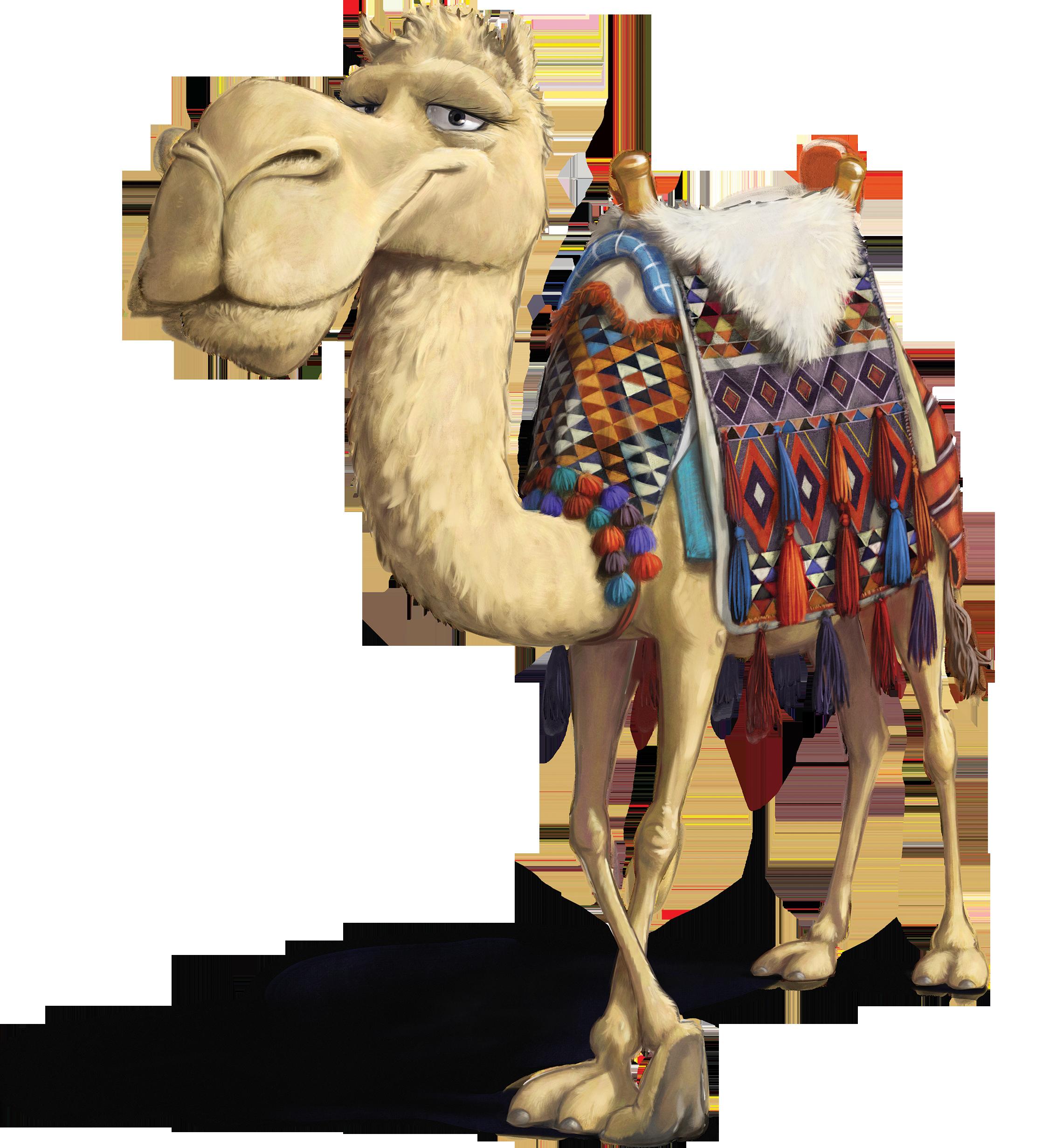 Открытка верблюд, про любовь