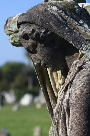 Magnolia Cemetery , Meeting St., Charleston, S.C.
