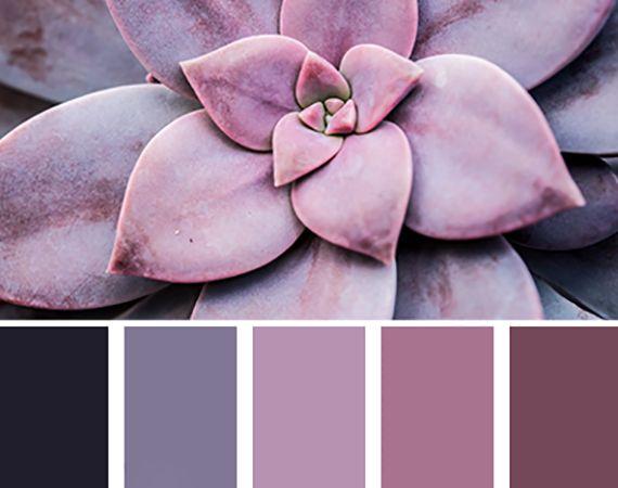 lila eine der trendfarben 2017 f r wohnraumgestaltung pinterest lila w nde und farben. Black Bedroom Furniture Sets. Home Design Ideas