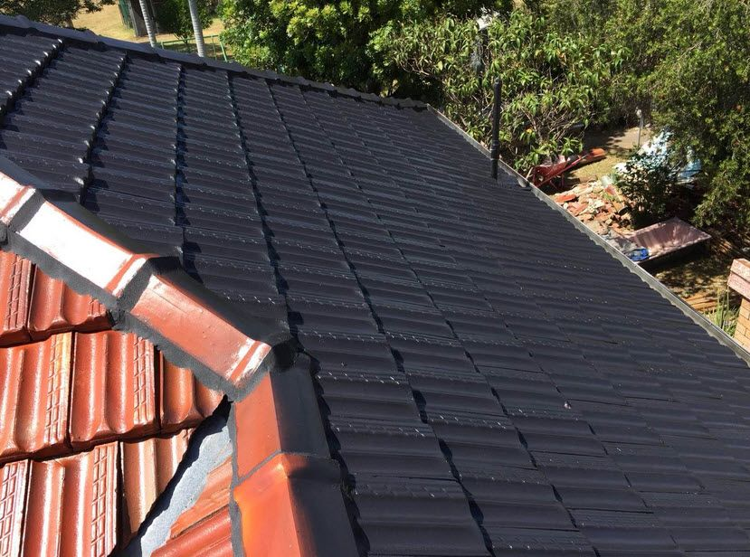 Appeal High Quality Roofpainting In Sydney Adds A Protective Layer To The Surface And Helps It Weather The Elements Roof Paint Roofer Roof