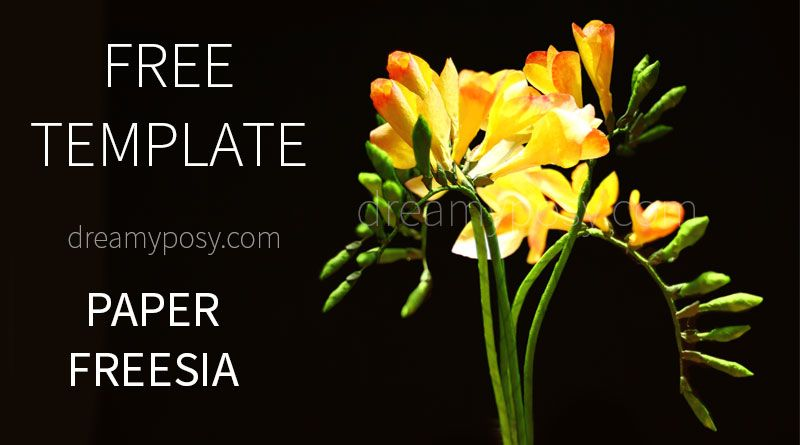 How To Make Freesia Paper Flower Free Template Paper Flowers How To Make Paper Flowers Crepe Paper Flowers