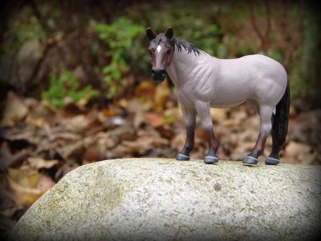 бисера, картинки лошадей брейер на природе вспышки световая энергия