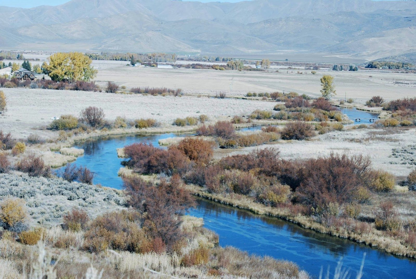 Silver creek idaho one of the great fly fishing for Silver creek idaho fishing