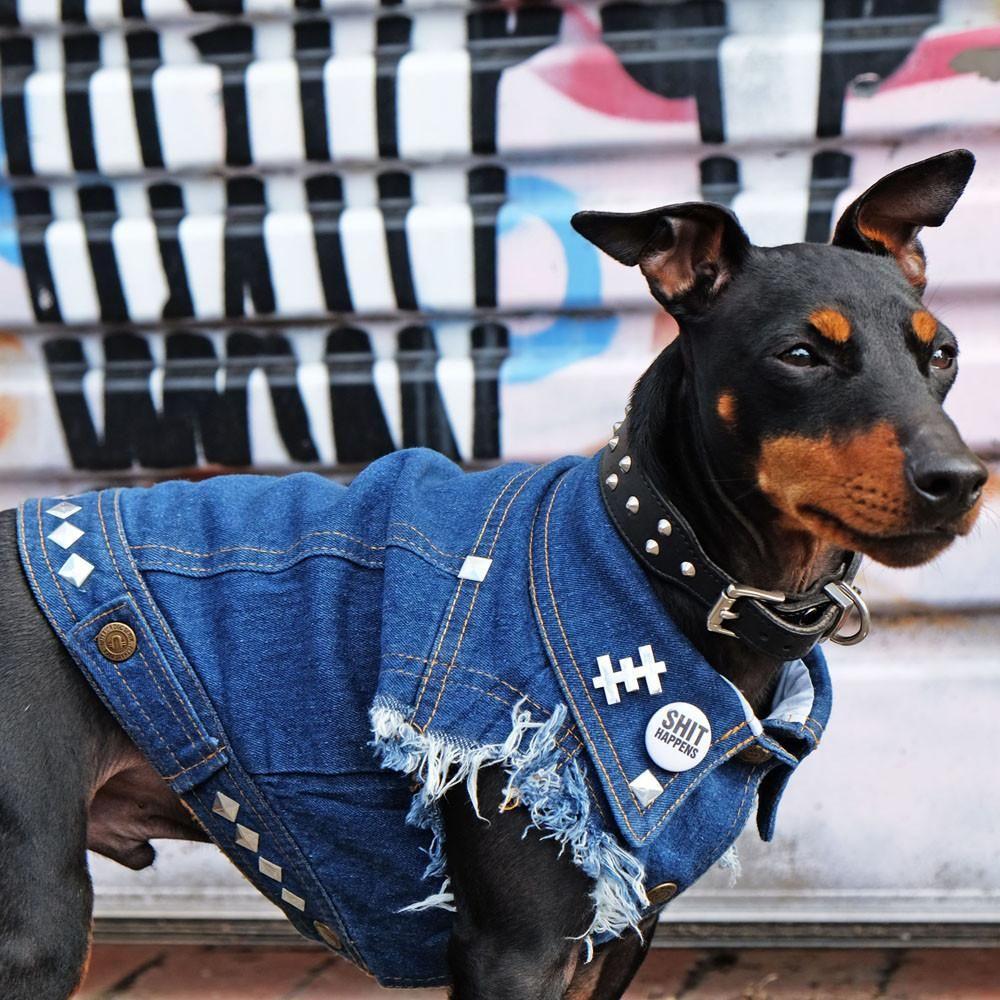79e96f8022 Studded denim dog vests for metal punk dogs. Whats more metal than more  metal  Nothing! Denim dog jackets with studs. Biker dog denim vests with  studs.