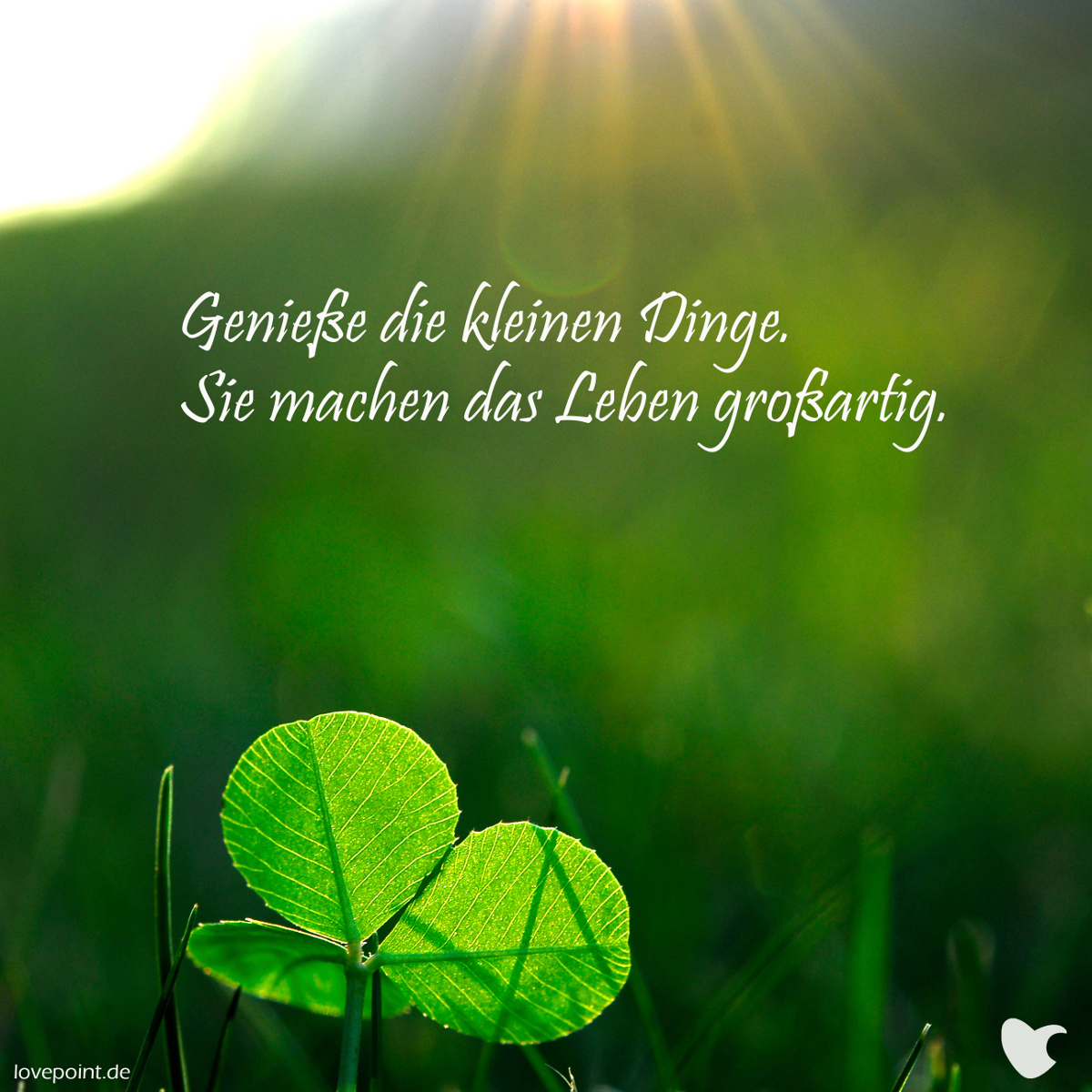 Genieße die kleinen Dinge. Sie machen das Leben großartig.   lovepoint.de