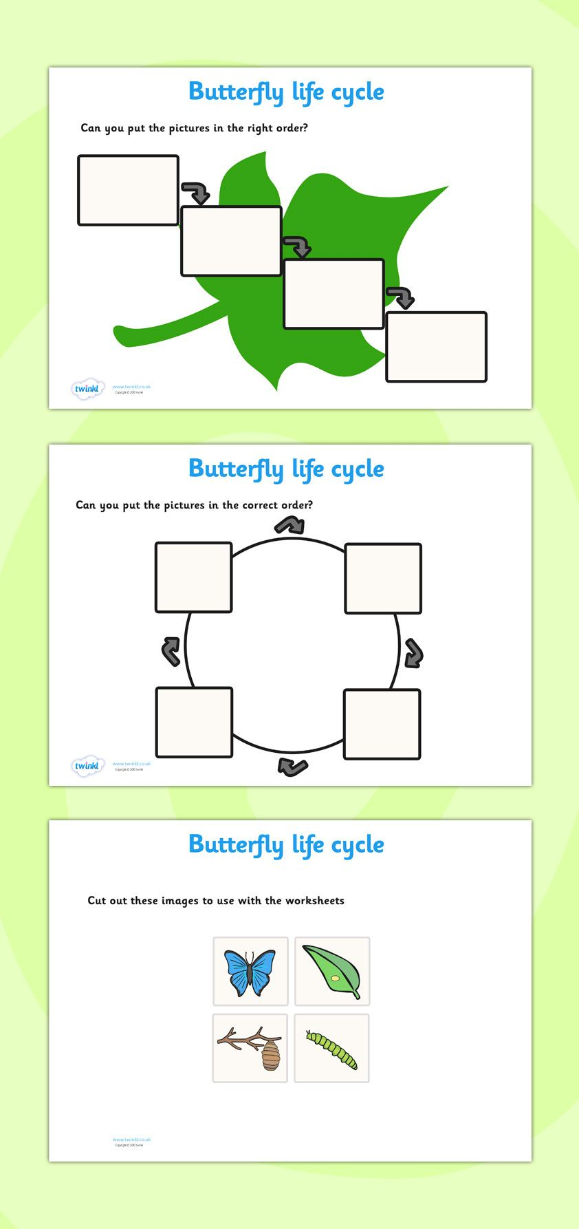Twinkl Resources >> Butterfly Life Cycle Worksheets >> Classroom ...