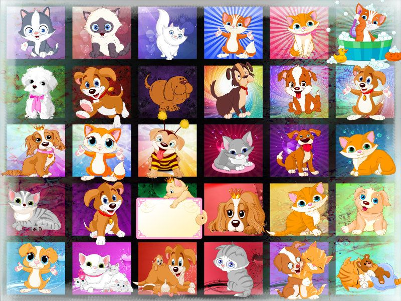 Cute animals with images cute animals collage maker