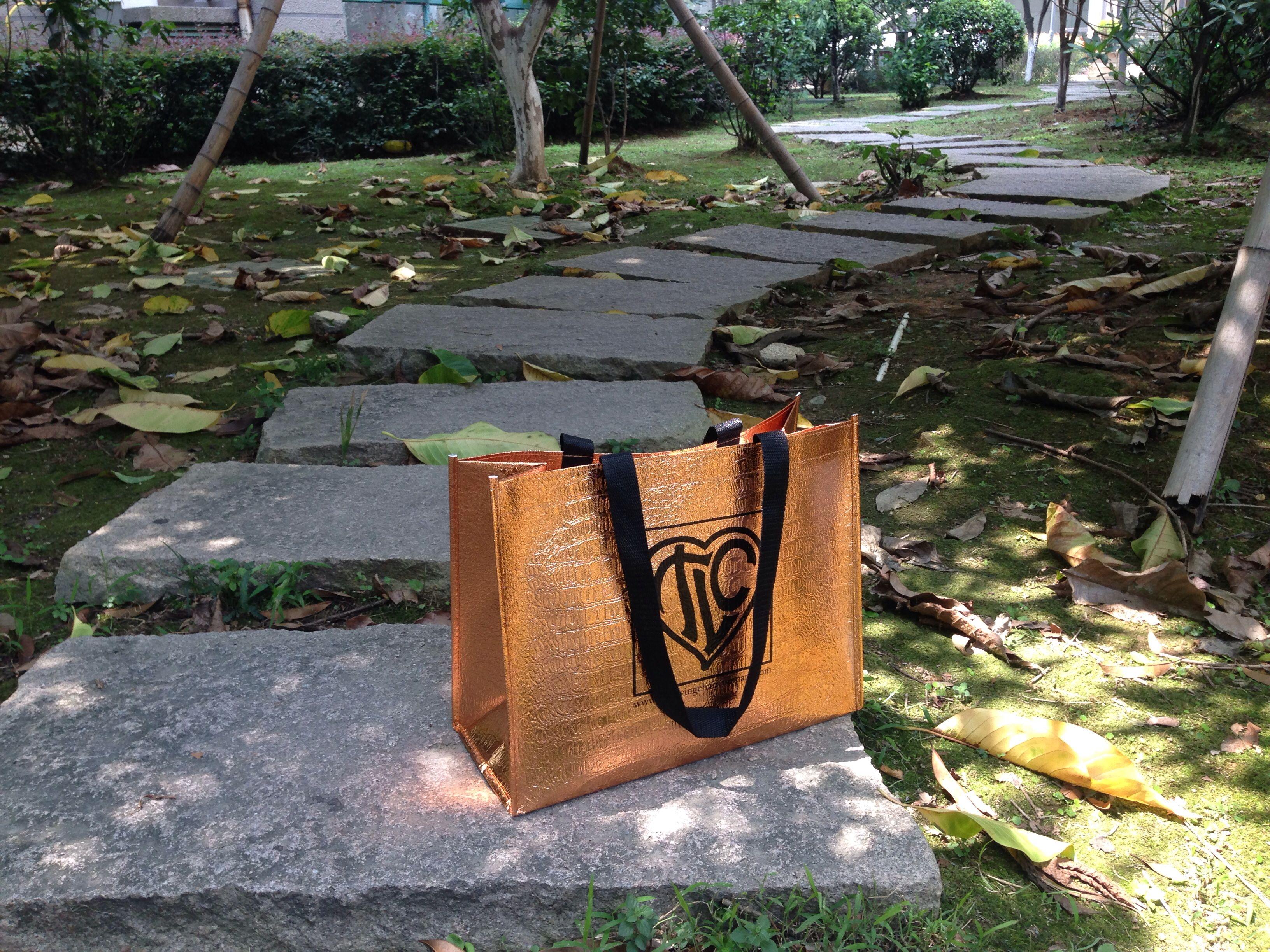fashion reusable shopping bag for gift bag, for cloth shop