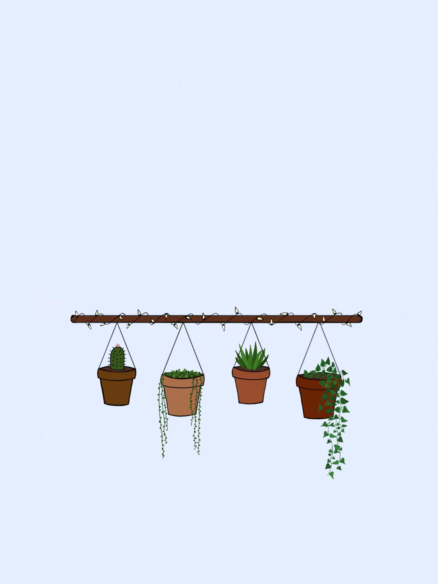 Hanging Plants Fairy Lights Hangingoutdoorplants Plant Doodle Plant Wallpaper Hanging Plants