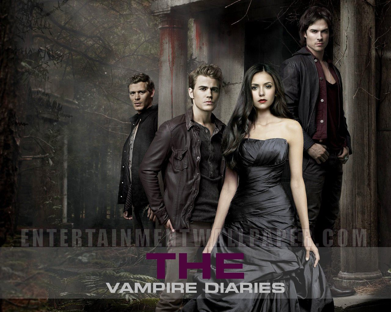 The Vampire Diaries The Originals Vampire Diaries Wallpaper