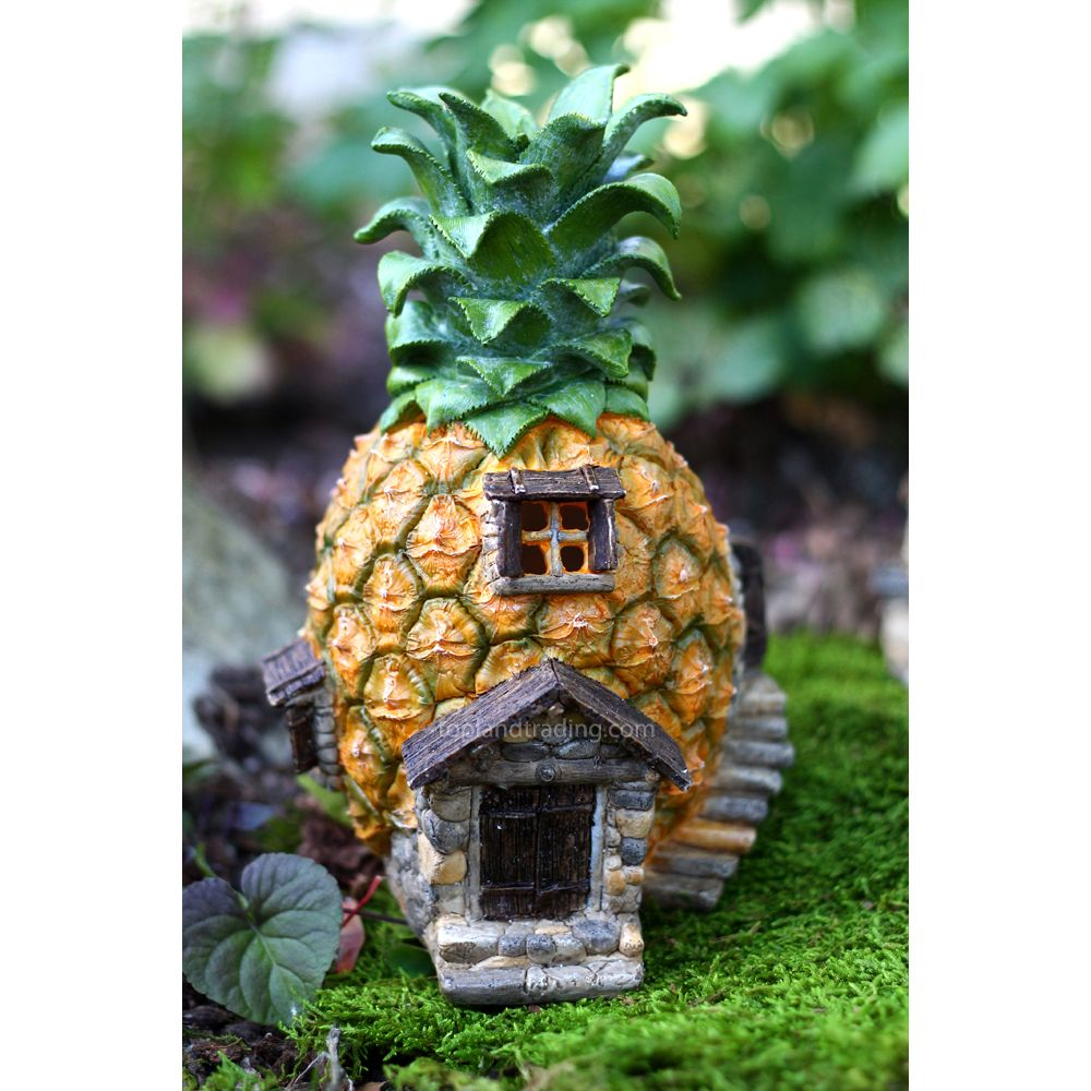 An Fresh Pineapple Fairy House Complete With Inside