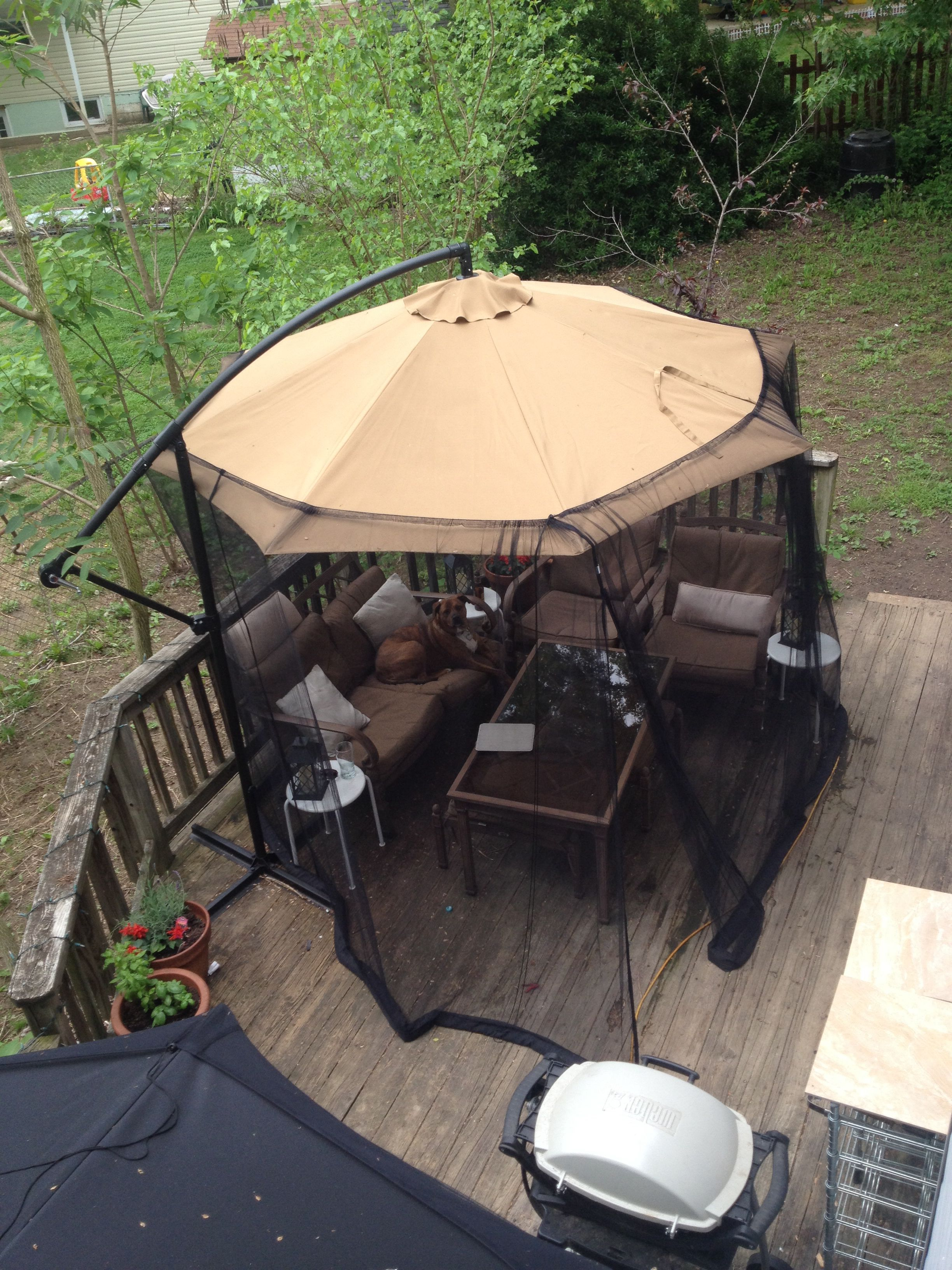 100 Screened Gazebo Outdoor Bug Free Living Room On My Deck 10 Ft Offset Umbrella From Aldi Yep And 40 Mosquito Net Gazebo Hot Tub Garden Modern Gazebo