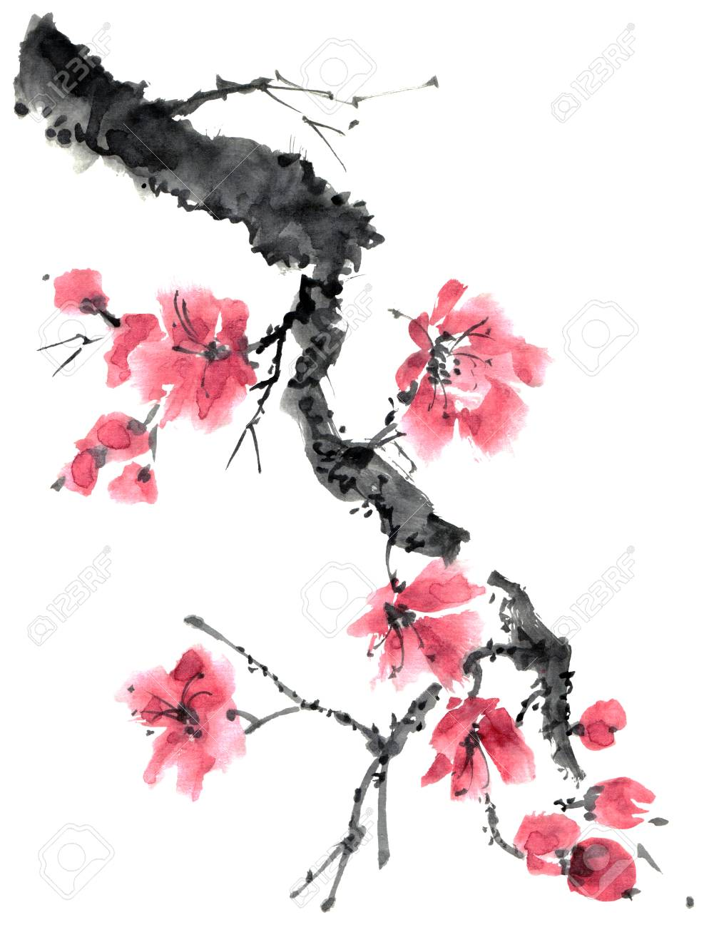 Watercolor And Ink Illustration Of Sakura Tree Branch With Pink Sakura Painting Sakura Tree Cherry Blossom Watercolor