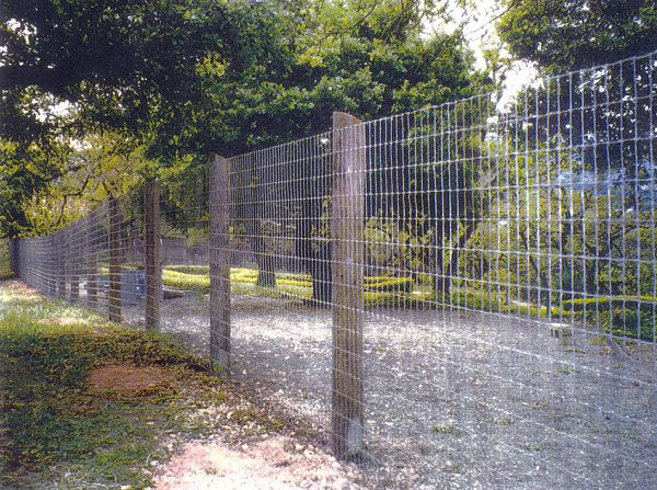 Wood And Wire Fence Wire Fence Backyard Fences Farm Fence