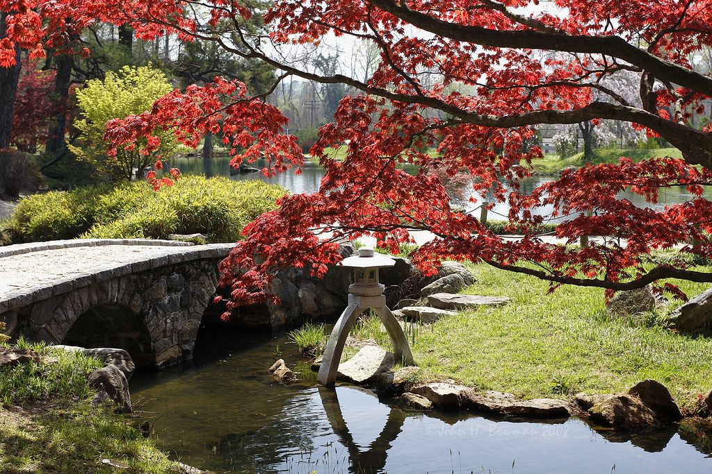 Maymont Japanese Garden (spirit House)   This Is One Of The Most Beautiful  Gardens