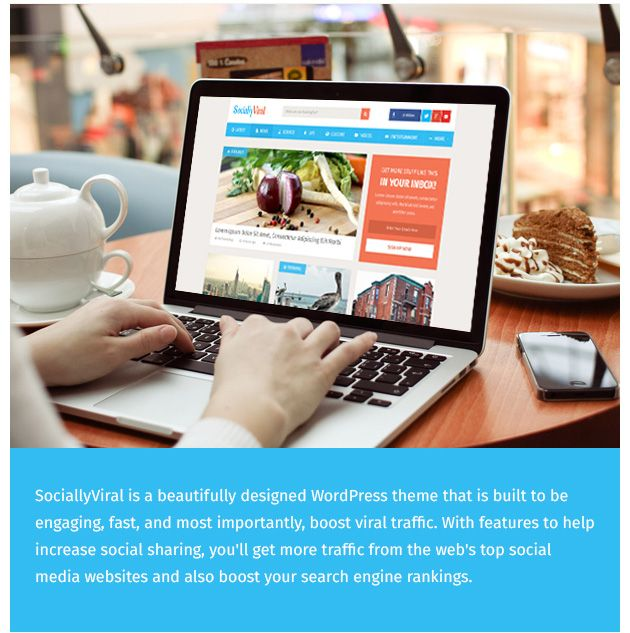 SociallyViral - WordPress Theme To Increase Social Shares, Traffic ...