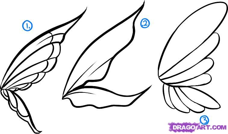 How To Draw Fairies By Dawn Fairy Drawings Fairy Wings Drawing