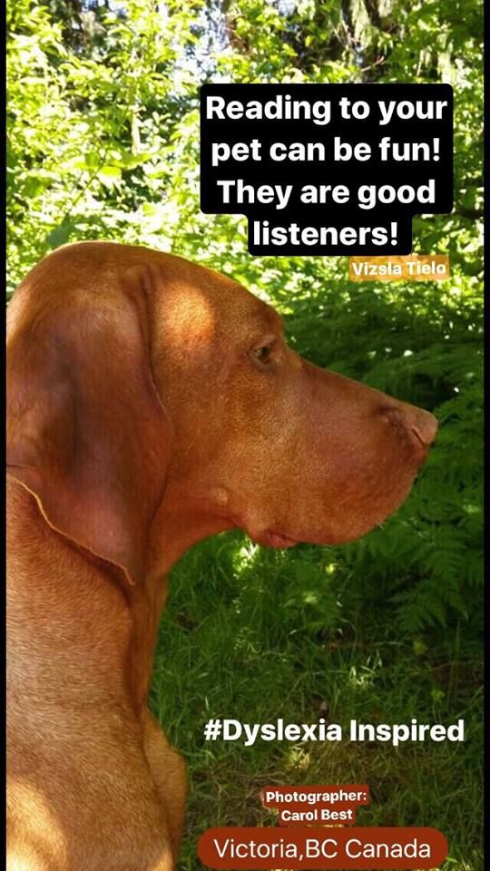 Send Us A Photo Of Your Pet Or Companion This Great Looking Dog From Victoria Bc Canada Is Keeping Us Dyslexiainspired On The Journey Good Listener