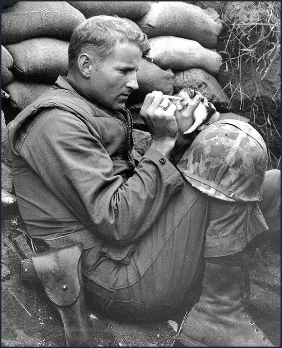 Usmc Sgt Frank Praytor In A Foxhole Nursing An Orphan Kitten He Named Miss Hap The Name Being Inspired By The Mish Korean War History Rare Historical Photos