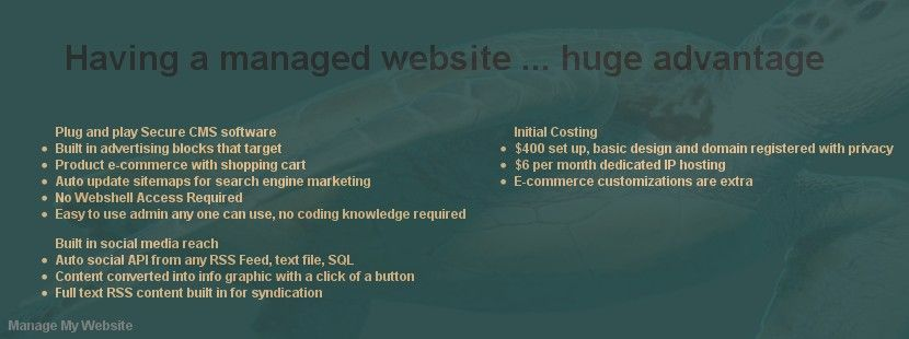 Hosted and managed #website netdatabiz.com/Website
