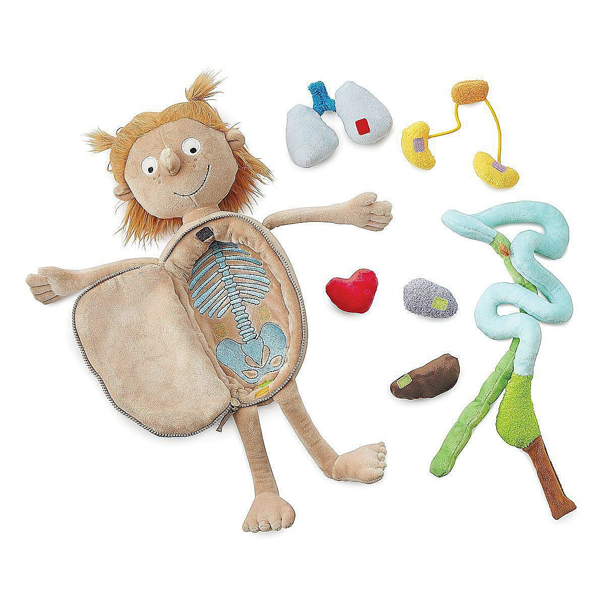 Little Patient | Doctor Doll, STEM, Anatomical Toys (With ...