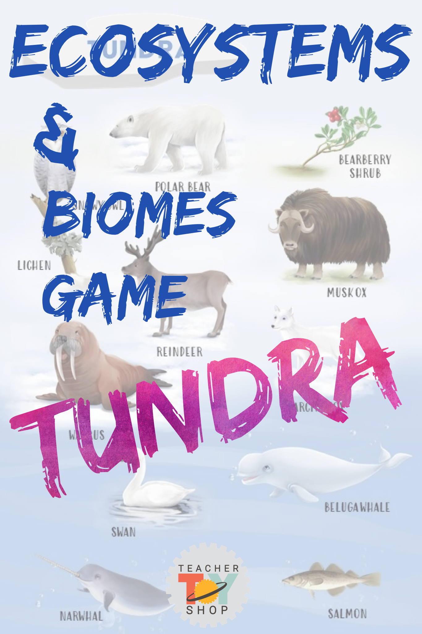 Ecosystems And Biomes Tundra Game In