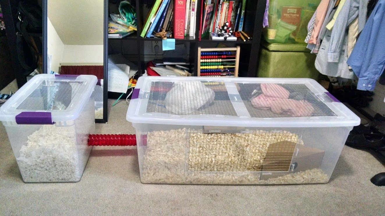 Made This Hamster Cage For My Syrian It Has Great Ventilation And A Separate Bin For Nesting Which She Actually Uses F Baby Hamster Hamsters As Pets Hamster