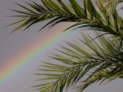 Rainbow in Alicante Spain by Zador Spanish schools Spain, via Flickr.