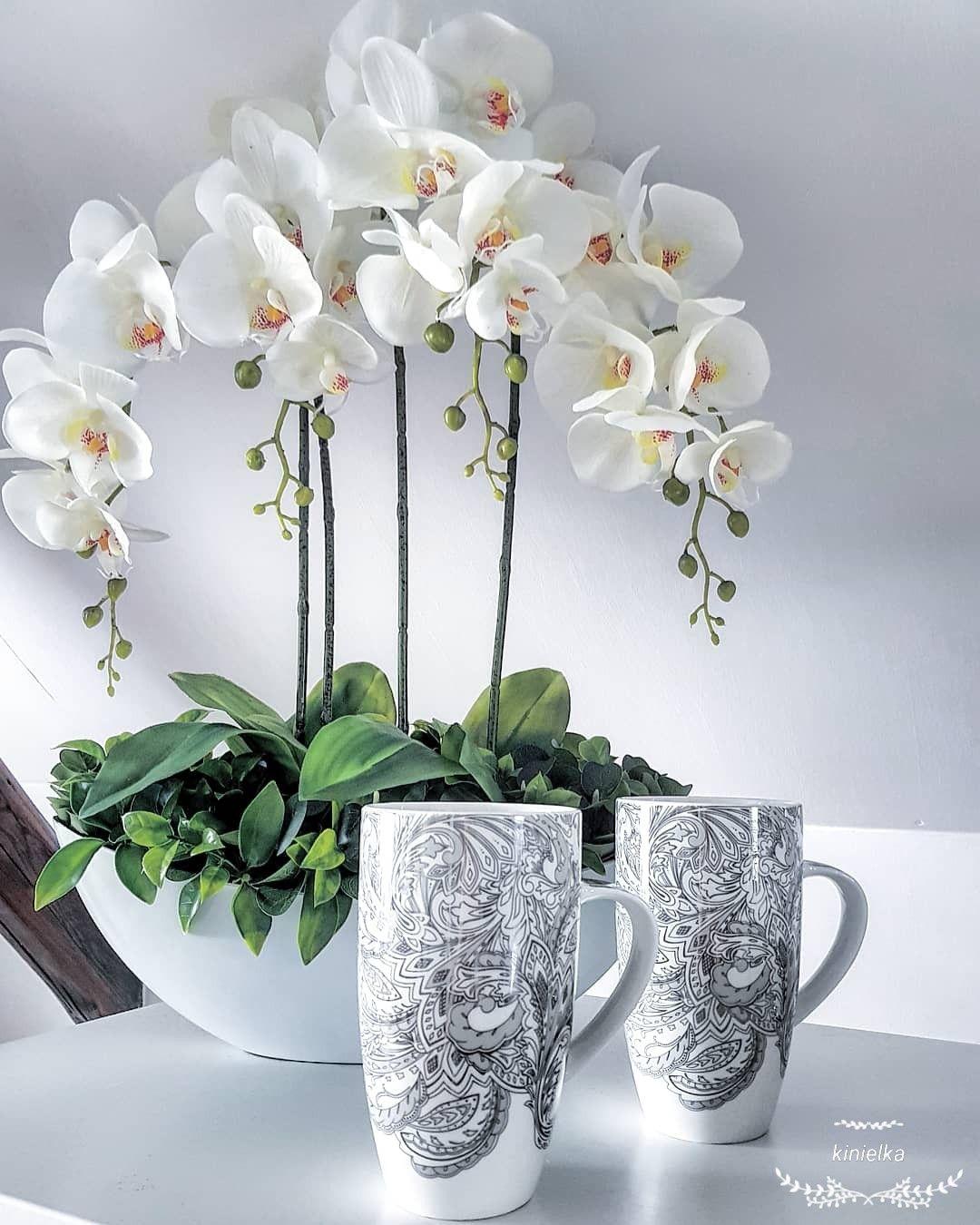 Cups Orchid Home Decoration Home Design Ikea Decor House Design Planter Pots