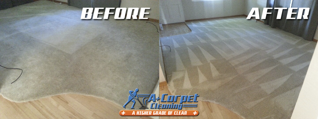Professional Truck Mount Carpet Cleaning Before And After Shoot 58 For A Plus Carpet Cleani How To Clean Carpet Carpet Cleaning Hacks Carpet Cleaning Solution