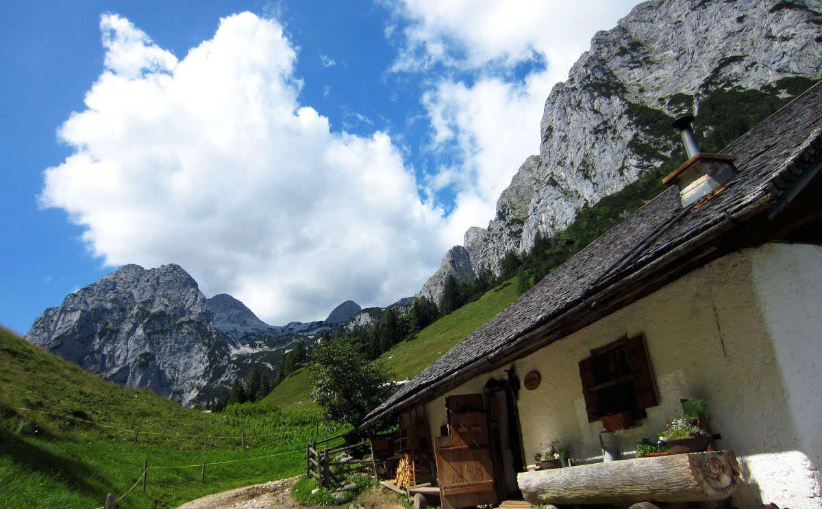 Die Wanderung auf die Halsalm belohnt mit einer einer zünftigen Almbrotzeit sowie einem wunderschönen Tiefblick auf den Hintersee im Bergsteigerdorf Ramsau