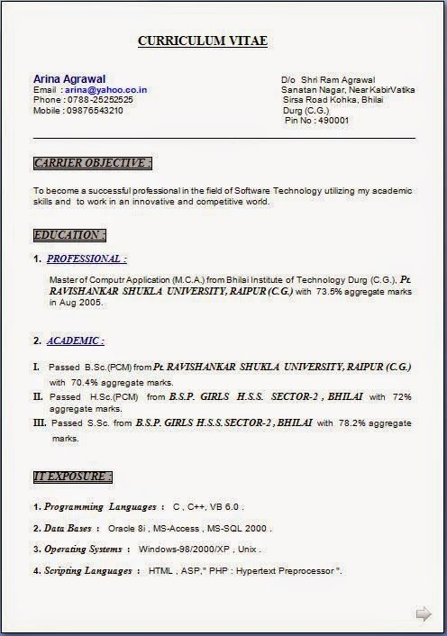 free cv writer Sample Template Example of ExcellentCV / Resume ...
