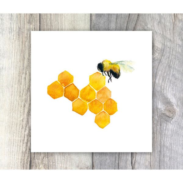 Honey Bee Watercolour Painting 6x6 Inches Kitchen Art Cafe Decor 7 36 Liked On Polyvore Featuring Home Wall