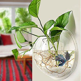 Decorative Glass Fish Bowls Fu Global Home Decoration Pot Wall Hanging Mount Bubble Aquarium