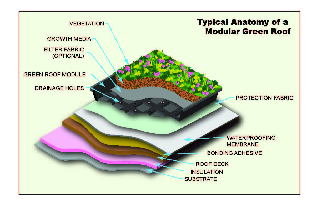 Marvelous Introduction To Green Roofs   EHS Journal