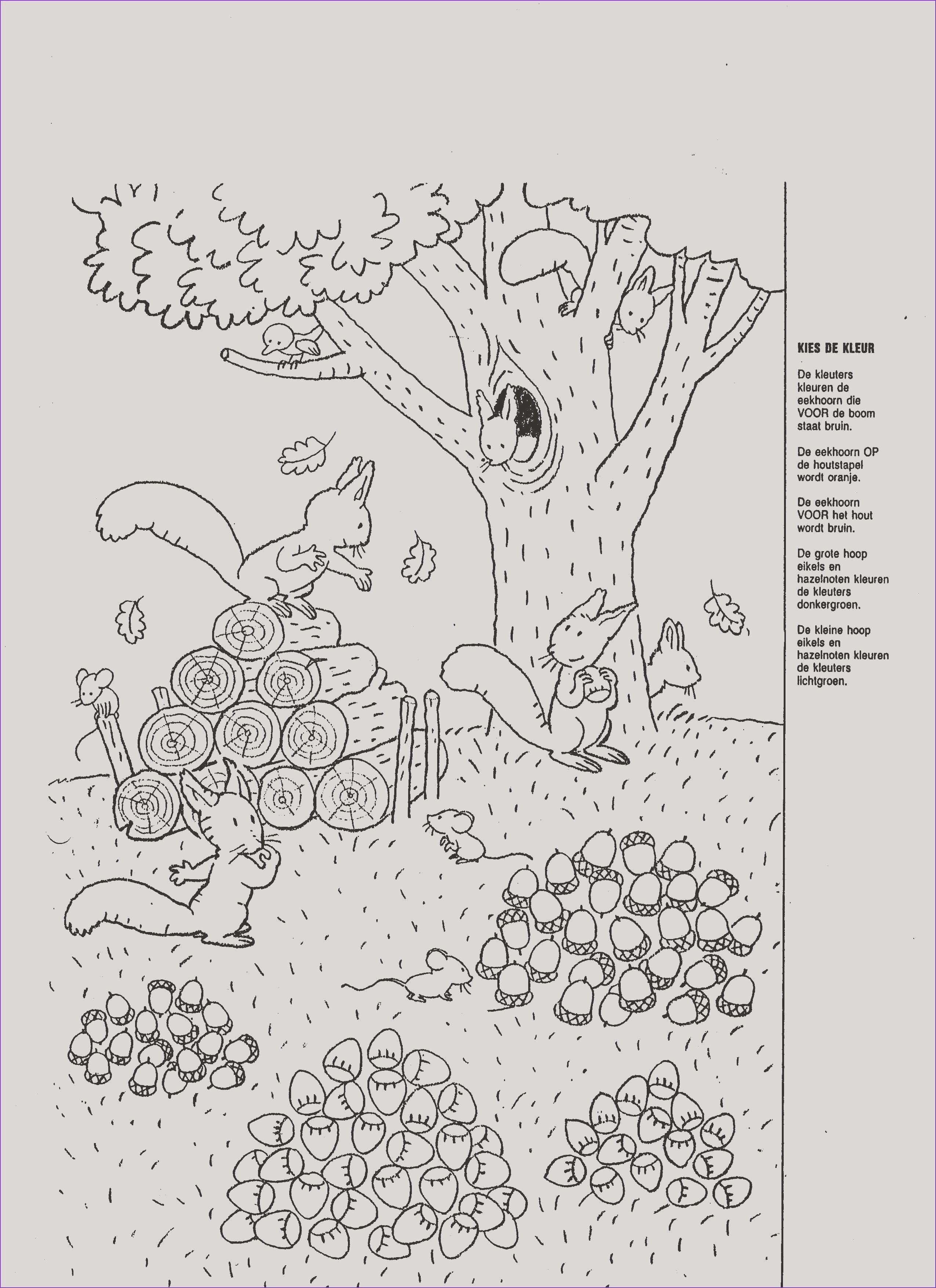 malvorlagen jahreszeiten pdf | aiquruguay