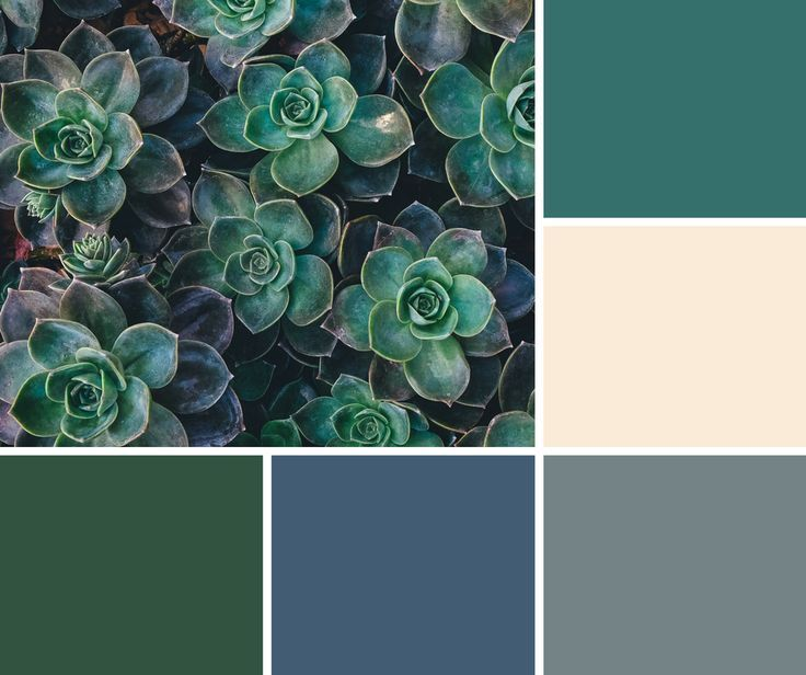 Image Result For What Color Goes Well With Hunter Green House