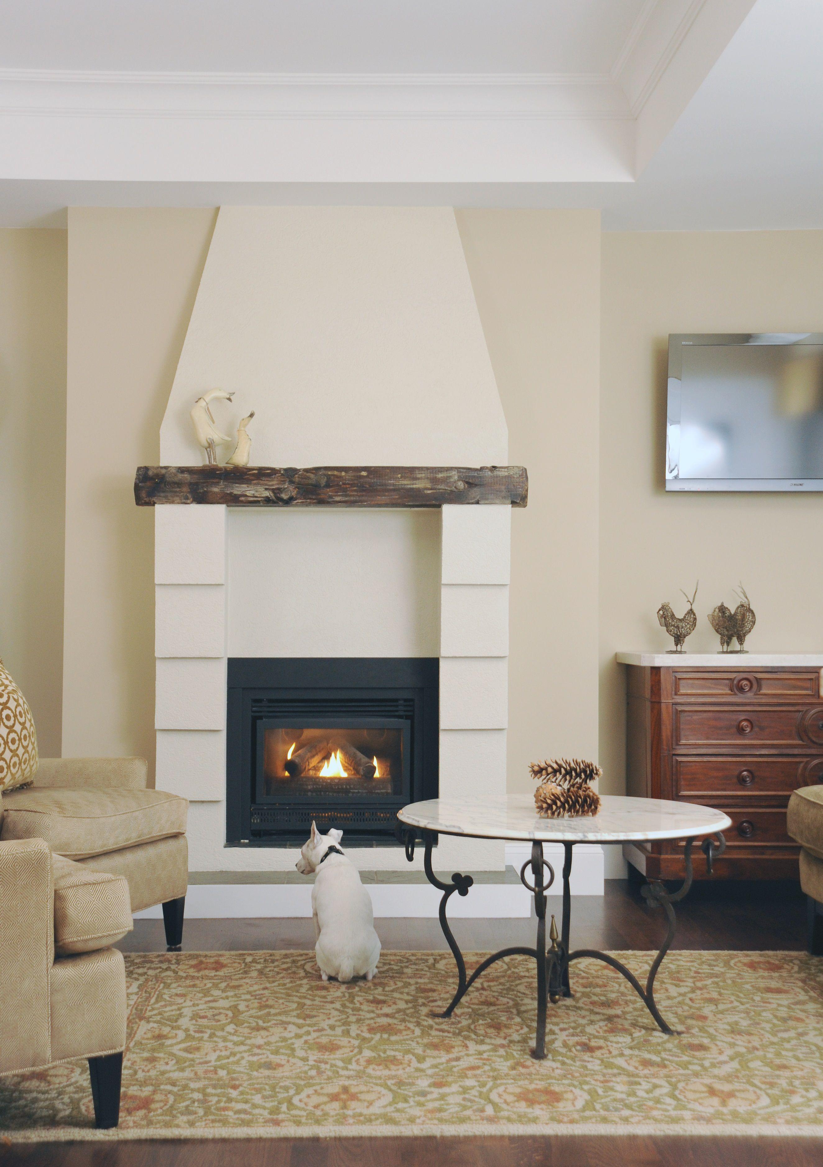 Interior Design Fireplace Living Room: Living Room Designed By Enviable Designs