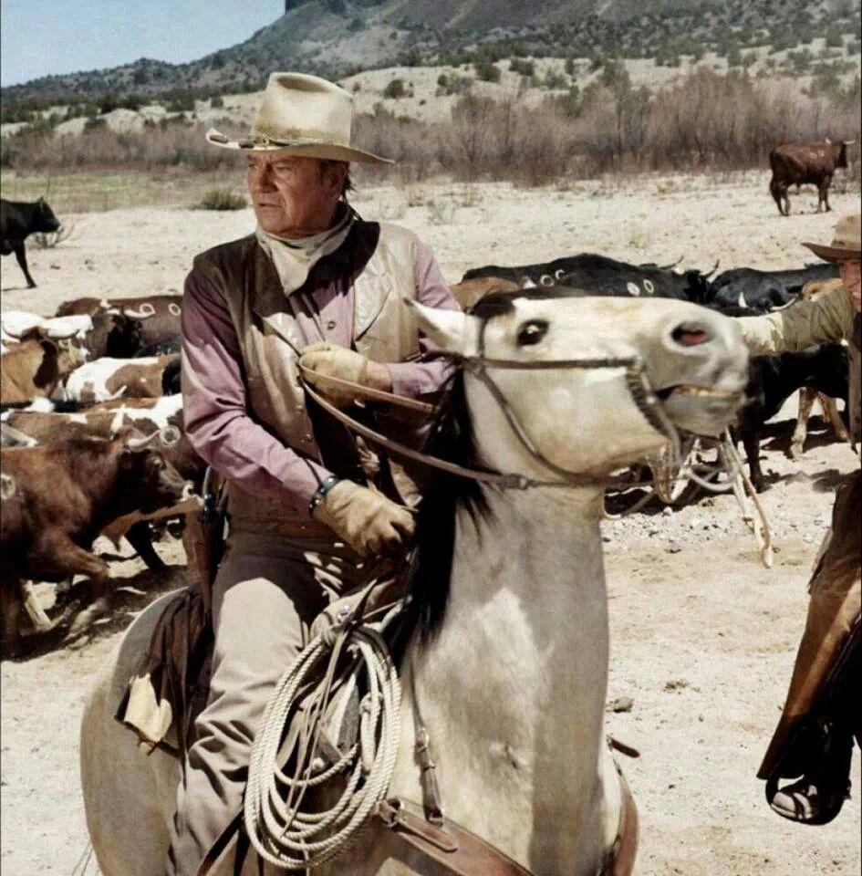 Cattle drive john wayne movies john wayne western movies
