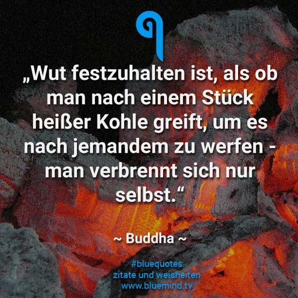 30 nachdenkliche Zitate   Selbstorganisation   Quotes, Buddhist